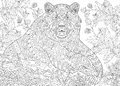 Zentangle stylized grizzly bear cartoon among blackberries or raspberries in woodland hand drawn sketch for adult antistress Royalty Free Stock Image