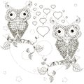 Zentangle stylized monochrome lovers owls sitting on the tree branches, moon, stars, hand drawn, hearts