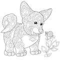 Zentangle stylized welsh corgi puppy