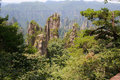 Zhangjiajie ancient mountains the province of hunan china Royalty Free Stock Photo