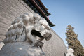 Zhengyangmen gate lion statue in front of gatehouse commonly know as qianmen in dongcheng district beijing china Stock Photography