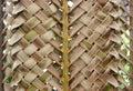 Zigzag interlocking of coconut leaves background Stock Photos