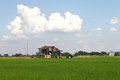 Zinc roof hut huts and tractor in the middle of rice fields green leaves Royalty Free Stock Photo