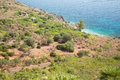 Zingaro Reserve, near Castellammare in Sicily Stock Photography