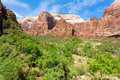 Zion Canyon Stock Photos