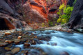 Zion Canyon Narrows Royalty Free Stock Photo