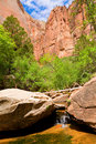 Zion creek Stock Image