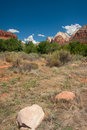 Zion national park landscape the picture is from the valley Royalty Free Stock Images