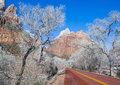 Zion park the national in utah on winter Royalty Free Stock Photography