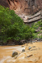 Zion river big bend and virgin national park utah the is muddy due to intense rainstorms upstream Stock Images