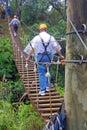 A zip line bridge on maui in the hawaiian islands or wire aerial runway aerial ropeslide death slide flying fox or foefie slide Royalty Free Stock Photos