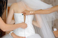 Zipper of wedding dress bridesmaids fasten with Stock Images