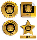 Zodiac - Leo Royalty Free Stock Image