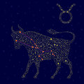 Zodiac sign Taurus over starry sky Royalty Free Stock Photo