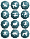 Zodiac signs an illustration of the twelve on round buttons Royalty Free Stock Image
