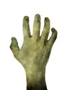 Zombie hand isolated on white background Royalty Free Stock Photo