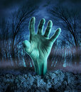 Zombie hand rising out of the ground in a spooky dark forest with creepy trees and fog as a symbol of halloween imagination with a Royalty Free Stock Photo