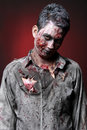 Zombie portrait of a standing looking camera Royalty Free Stock Photos