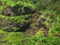 Zone verdi della montagna Fotografia Stock