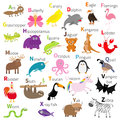Zoo animal alphabet. Cute cartoon character set. White background. Baby children education. Butterfly, dolphin, flamingo, jaguar, Royalty Free Stock Photo