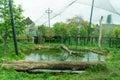Zoo enclosure Royalty Free Stock Photo