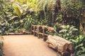 Zoo jungle Royalty Free Stock Photo