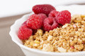 Zoomed berries on golden cereals in bowl white Royalty Free Stock Photo