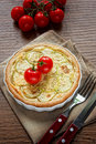 Zucchini and cheese tart Royalty Free Stock Photos