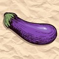 Zucchini on crumpled paper Royalty Free Stock Images