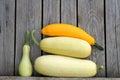Zucchiny marrow marrows squash gourds vegetable potherb harvest crop fresh kailyard fertility fecundity prolific fruitful fertile Stock Photos