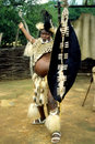 Zulu warrior Stock Image