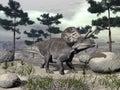 Zuniceratops dinosaur - 3D render Royalty Free Stock Photo