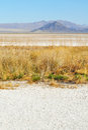 Zzyzx soda lake mojave desert national preserve Royalty Free Stock Images