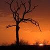 Sunset soft Stock  Photo