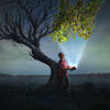 Bringing life to a tree. A man holds open a glowing book, that leads to life on a dead tree Stock Photo