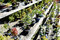 Stock Image :  Árvore dos bonsais no potenciômetro cerâmico