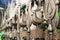 Stock Image :  Σύμβολα πένθους Shiite's