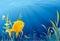 Stock Image :  Χρυσά ψάρια, υποβρύχια ζωή - απεικόνιση
