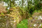 Stock Image :  Руины Сан Ignacio