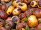 Stock Image :  яблоки тухлые