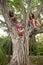Stock Image : 孩子上升树