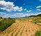 Stock Image : 干燥农田