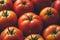 Stock Image :  成熟蕃茄