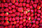 Stock Image : 草莓