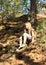 Stock Image :  进来下来在森林里的女孩