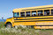 Stock Image : Abandoned school-bus