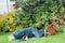 Accident, garden fall over. Danger. man unconscious.