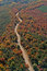 Stock Image : Aerial rural Wisconsin autumn road