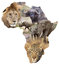 Stock Image : African wildlife background