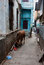 Stock Image : Alley in Varanasi